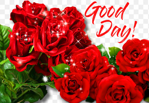 Red Roses Good Day Wallpaper