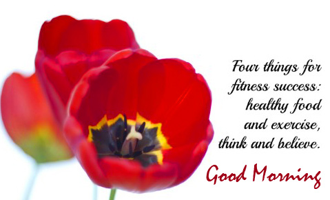 Red Tulips with Motivational Quotes Good Morning Image
