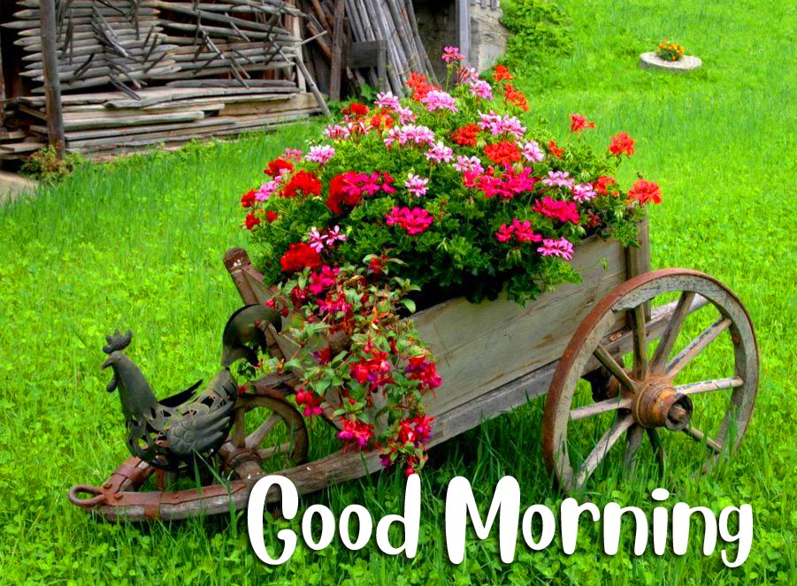 Beautiful Flowers Garden Statue with Good Morning Wish