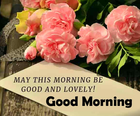 Beautiful Good Morning Quotes with Flowers