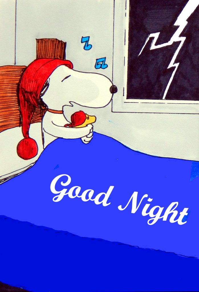 52+ Good Night Snoopy Images (Latest pics)