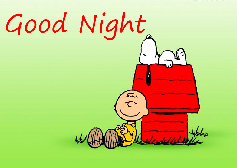 Beautiful Snoopy Good Night Picture and Pic