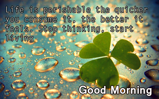 Beautiful and Latest Positive Words Good Morning Pic
