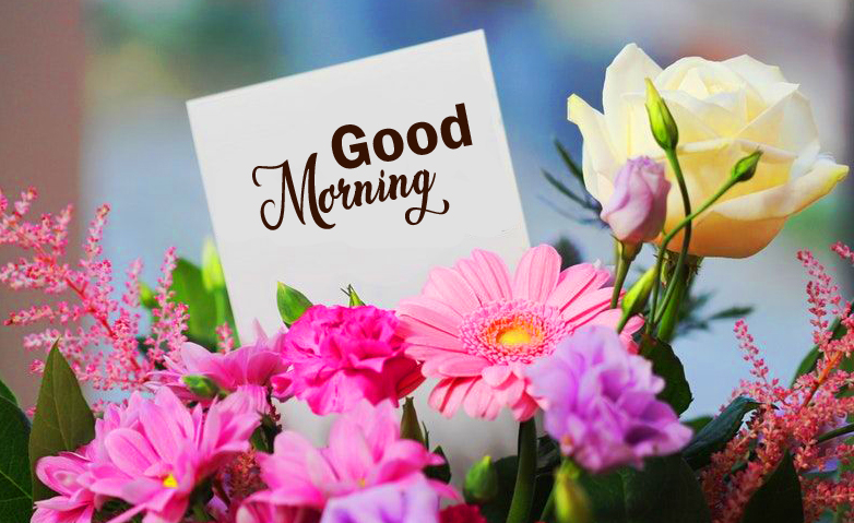 Best Good Morning Card Flowers Image