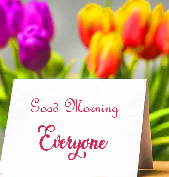 Best Good Morning Everyone Card with Tulips