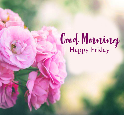Best Spring Flowers with Good Morning Happy Friday Wish