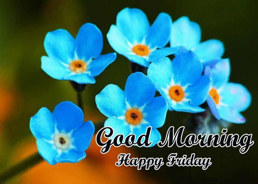 Blue Flowers Good Morning Happy Friday Pic
