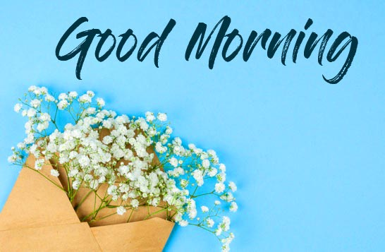 Cute Flowers Envelop with Good Morning Wish