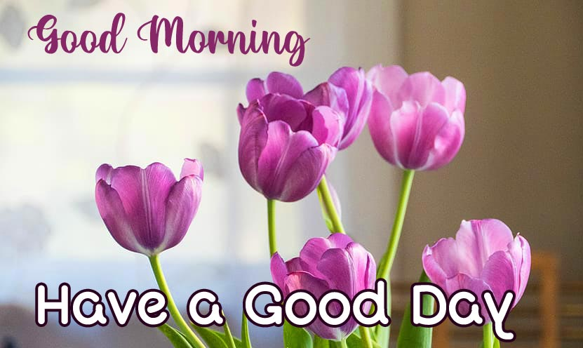Cute Flowers with Good Morning Have a Good Day Wish