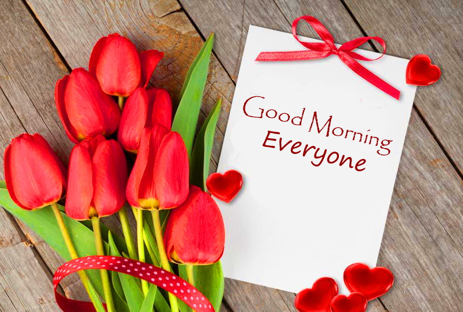 Cute Rede Tulips Good Morning Everyone Image