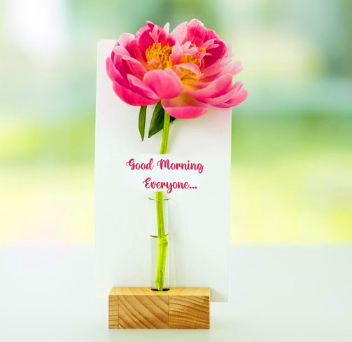Flower Good Morning Everyone Picture