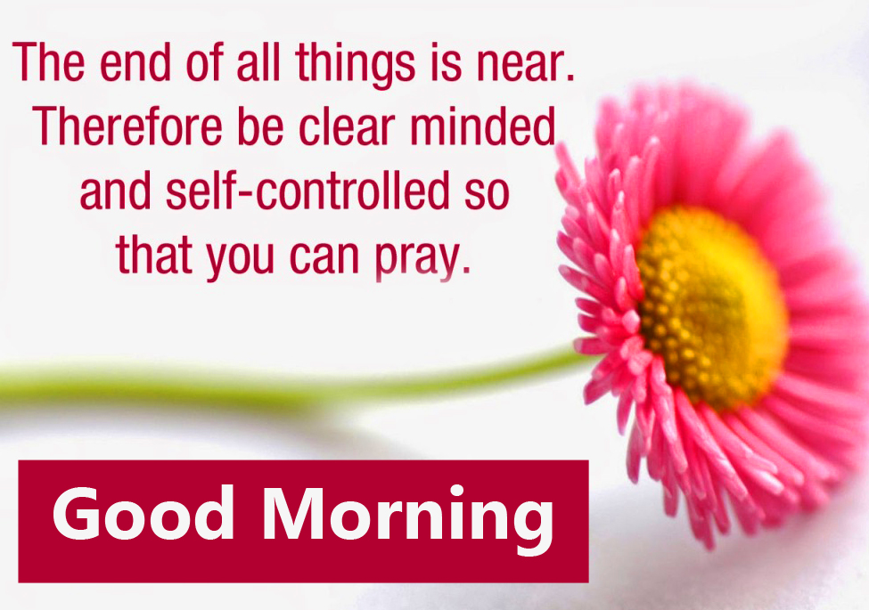 Flower with Good Morning Blessing Picture HD