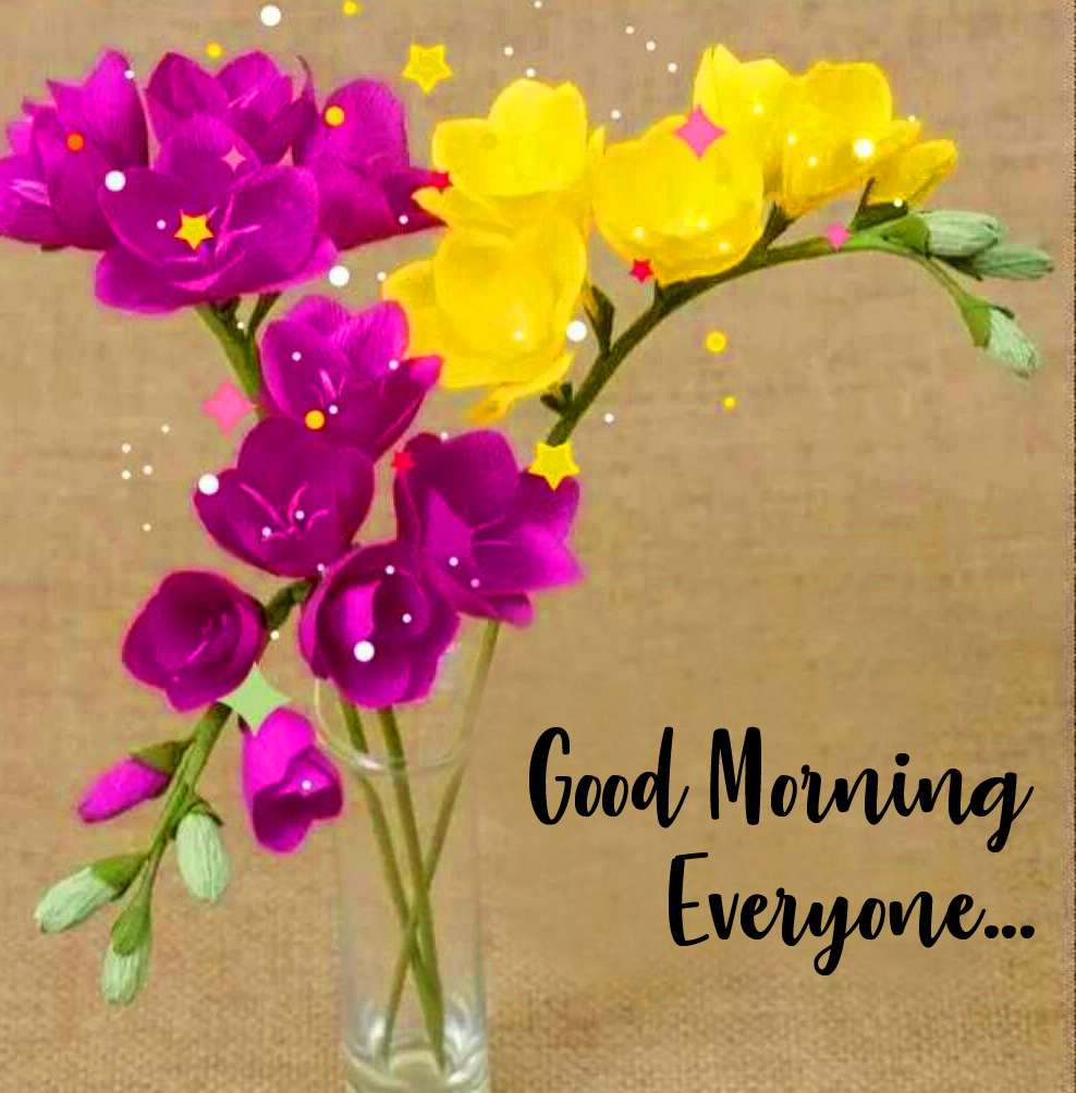 Flowers Good Morning Everyone Pic