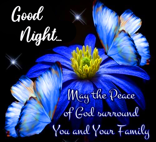 Flowers with Blessing Quotes and Good Night Wish