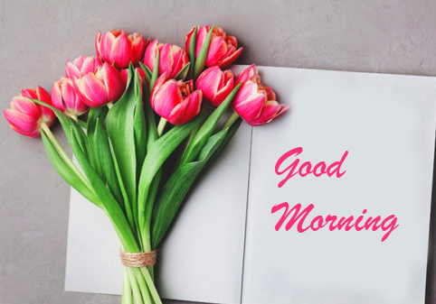 Flowers with Good Morning Card