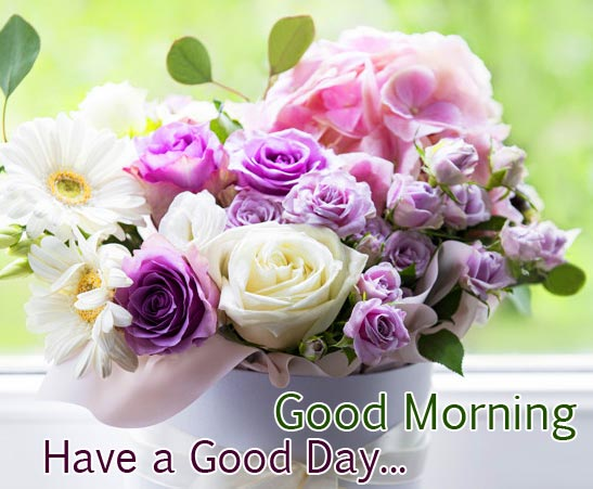 Flowers with Good Morning Have a Good Day Message