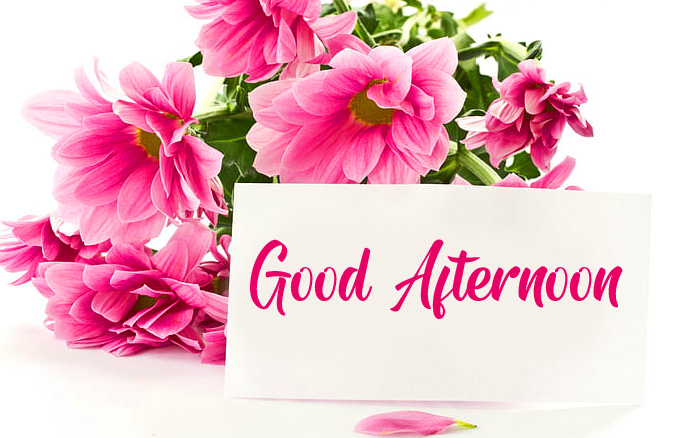 Good Afternoon Card with Flowers HD