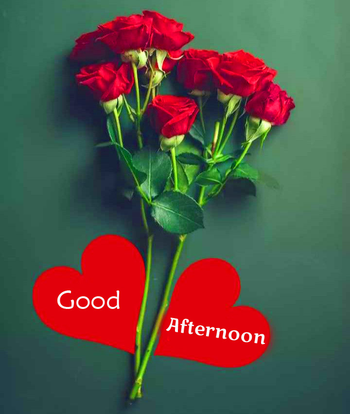 Good Afternoon Red Roses Heart Wallpaper