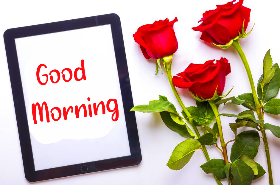 Good Morning Frame with Red Roses Image