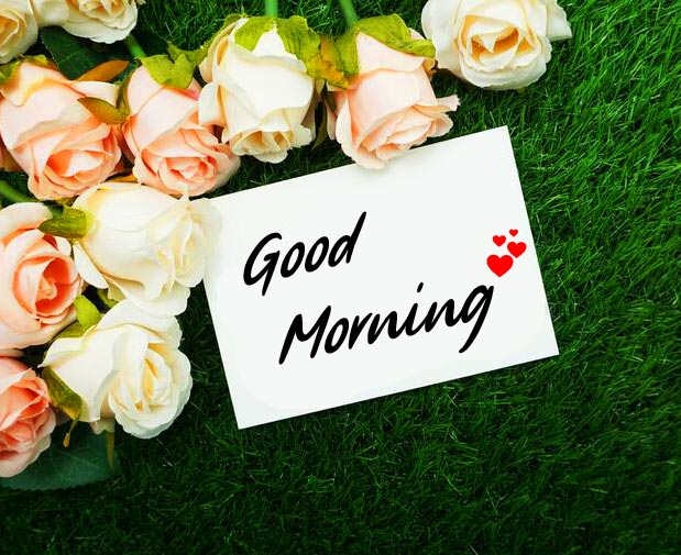 Good Morning Greeting Card with Flowers