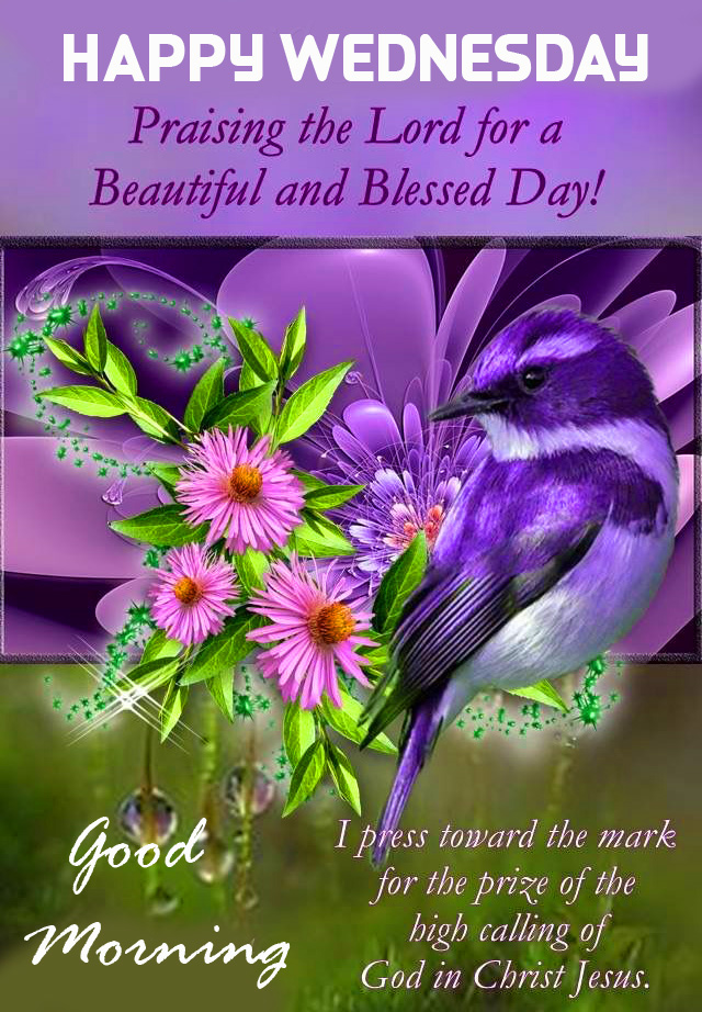 Good Morning Happy Wednesday Blessing Photo