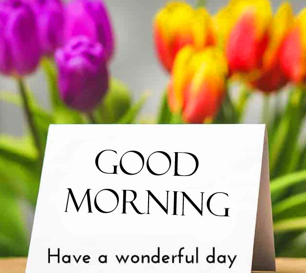 Good Morning Have a Wonderful Day Card with Flowers