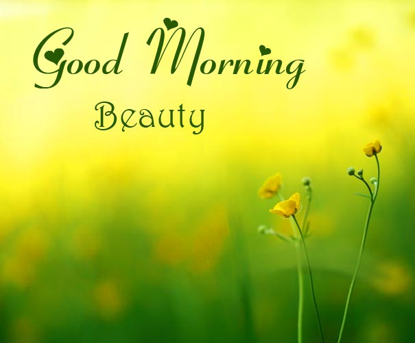 Good Morning Image for Beauty