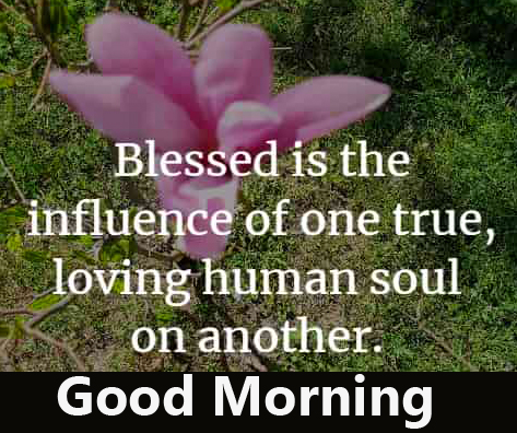 Good Morning Wish with Blessed Message