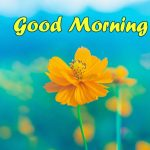 48+ Hd Good Morning Images