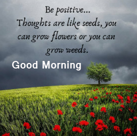 Good Morning with Positive Thought Photo