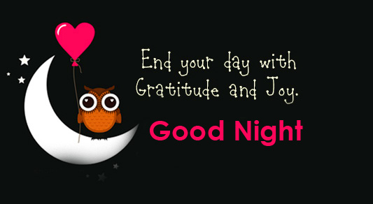 Good Night Greeting with Cute Owl on Moon