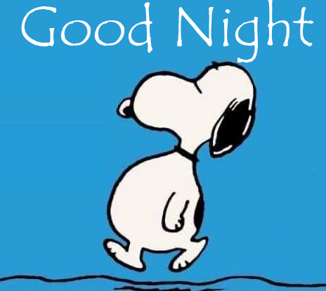 Good Night Snoopy Picture
