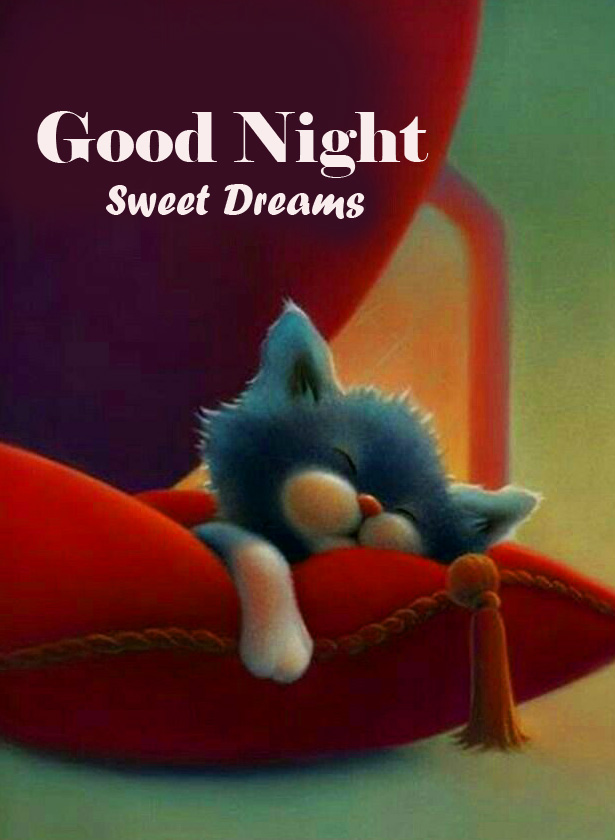 Good Night Sweet Dreams Cute Picture