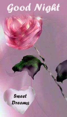 Good Night Sweet Dreams Rose and Heart Picture