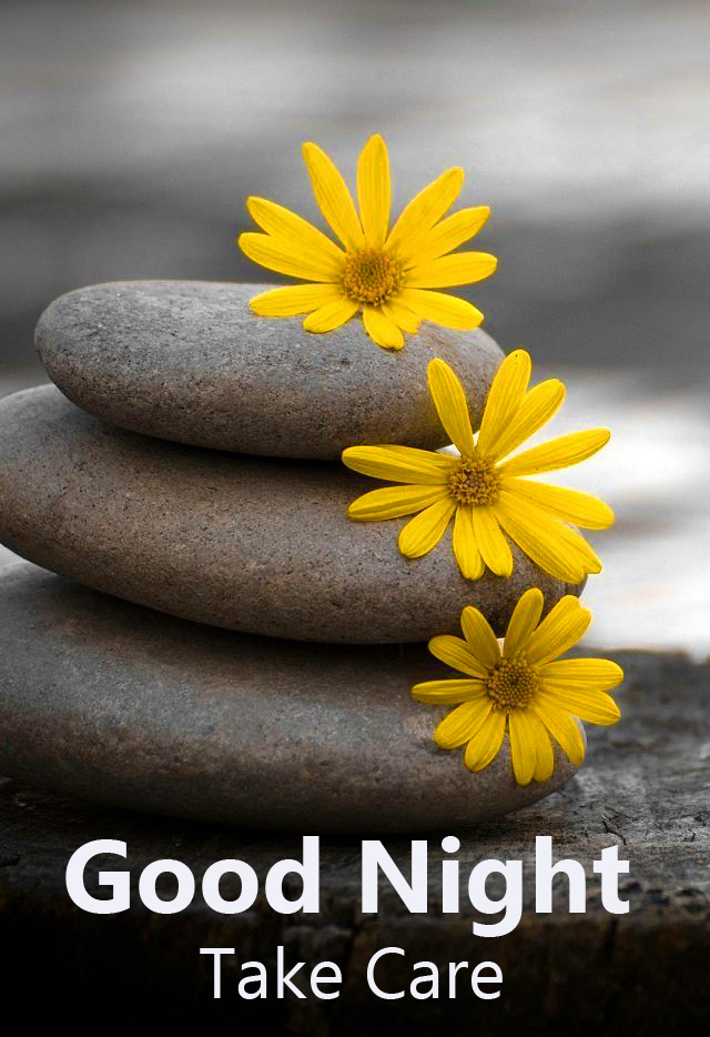 Good Night Take Care Flowers and Stone