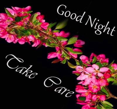 Good Night Take Care with Flowers Image