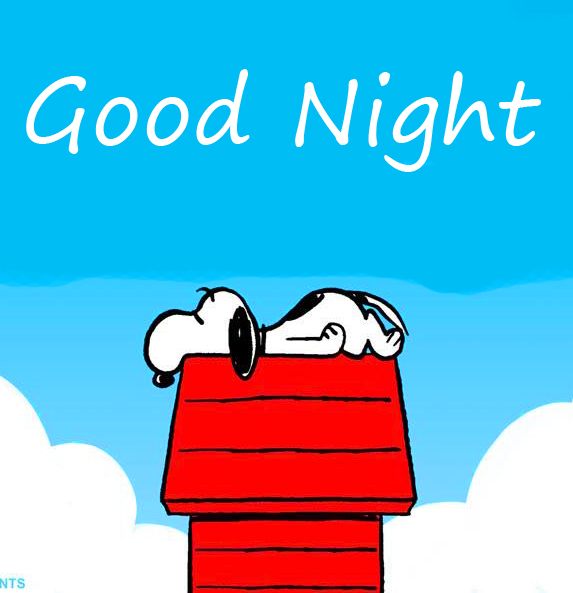 Good Night with Sleeping Snoopy Pic
