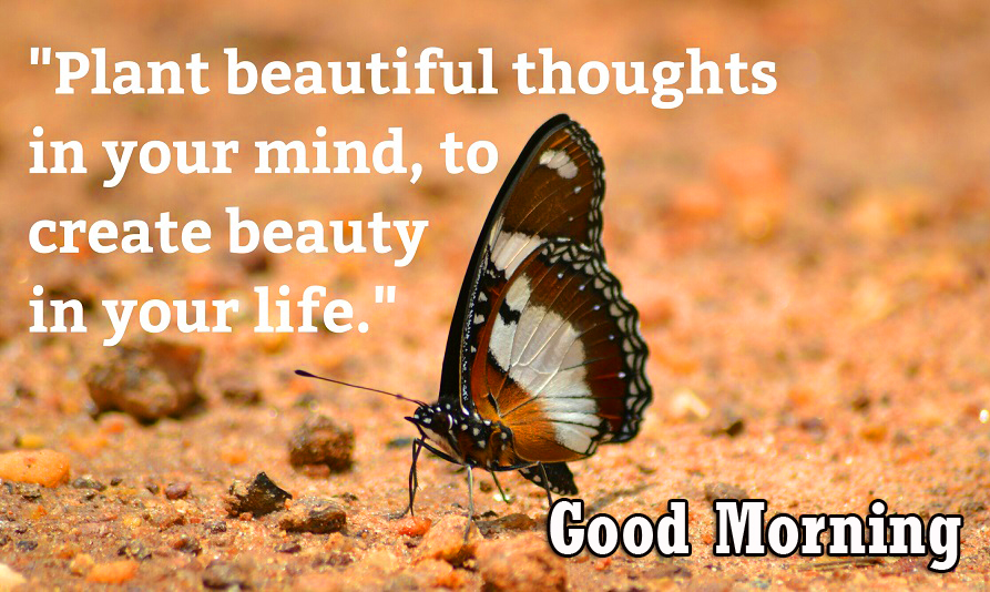 HD Beautiful Positive Quotes Good Morning Pic