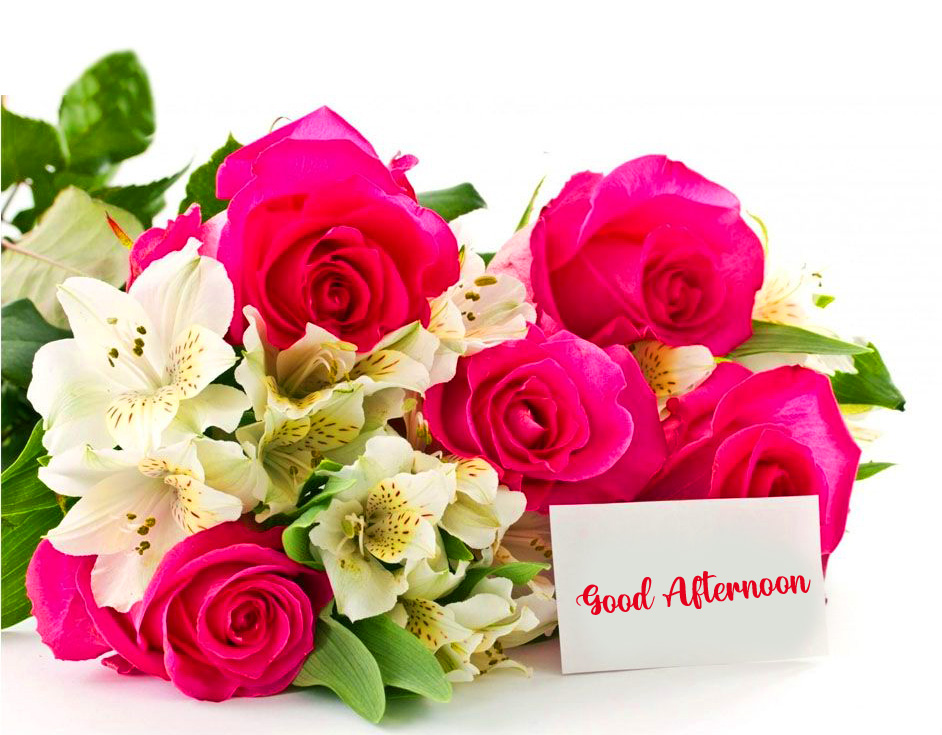 HD Roses Good Afternoon Wallpaper