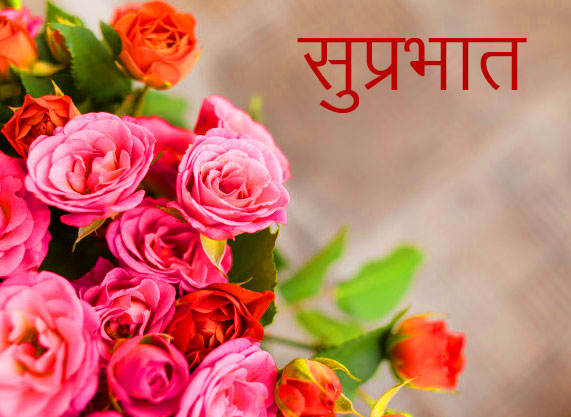 HD Summer Flowers Suprabhat Picture