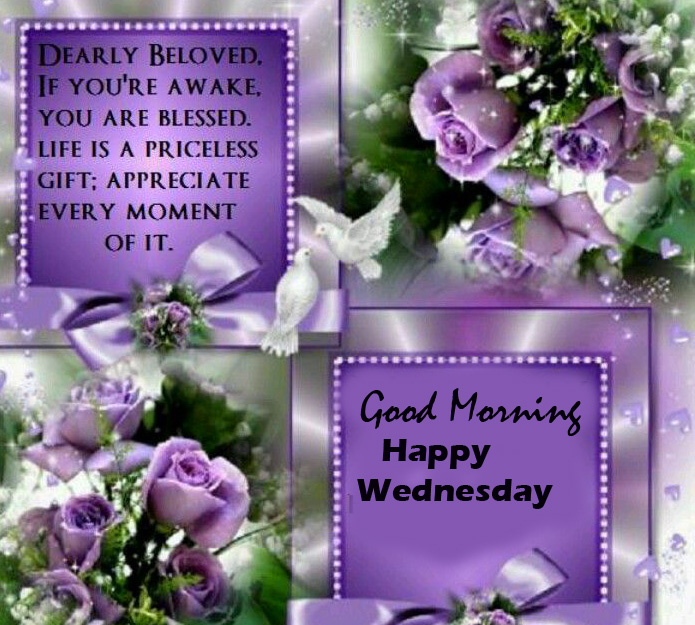 Latest Blessing Quotes Good Morning Happy Wednesday Image