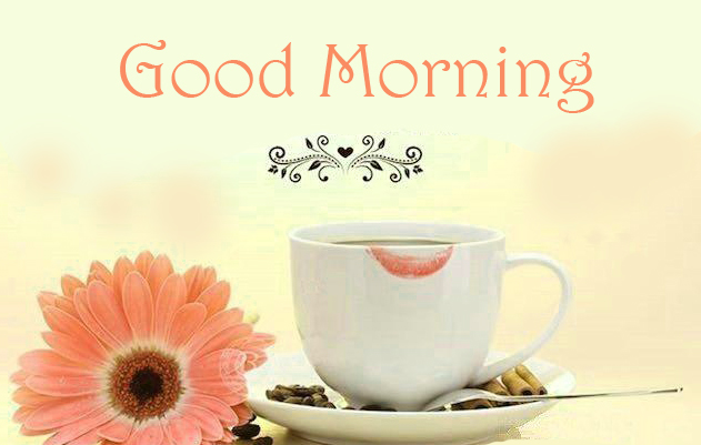 Latest Coffee Cup with Flower and Good Morning Wish