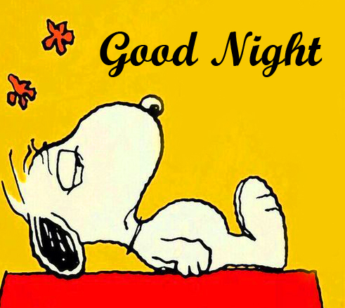 Latest Snoopy Good Night Picture
