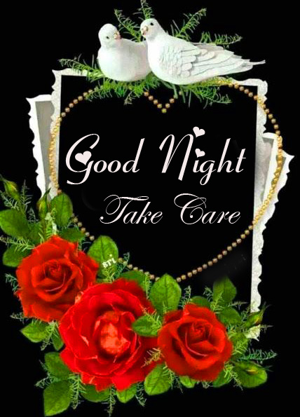 Love Birds and Roses Good Night Take Care Image