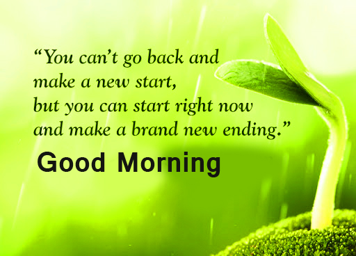 Lovely Green Background with Good Morning Wish and Positive Words