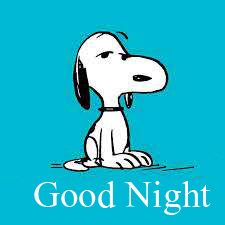Lovely Snoopy The Dog Good Night Image