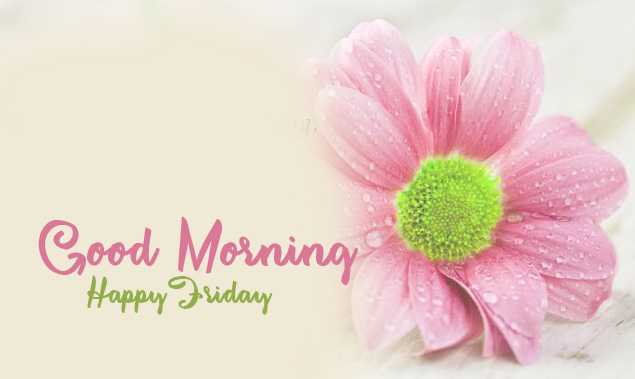 Pink Flower Good Morning Happy Friday Image