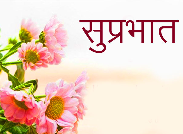 Pink Lovely Flowers with Suprabhat Wish