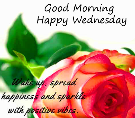 Rose with Good Morning Happy Wednesday Blessing Pic