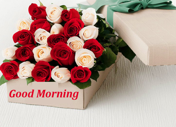 Roses Box with Good Morning Wish